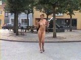 Mature Slut Fucked In Public